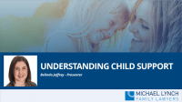 "A screenshot of a webinar ""Understanding child support"""