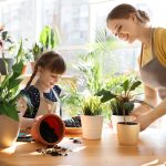 Dealing with stress. Accompanying picture: mother and daughter taking care of home plants at table indoors